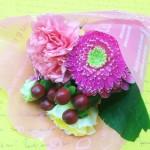 51 - 花のモナミ
